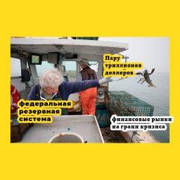 мем - женщина бросает лобстера в океан - пару триллионов долларов