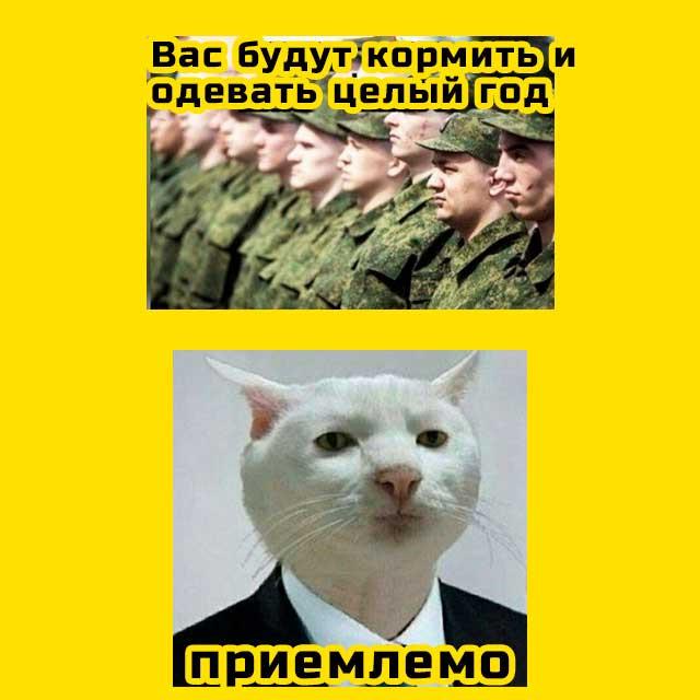 мем - приемлемо -  военком