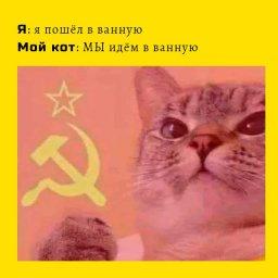мем - всмысле кот коммунист