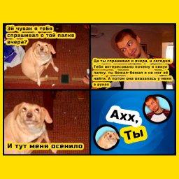 мем - ох, ты - собака догадалась про фокус с палкой