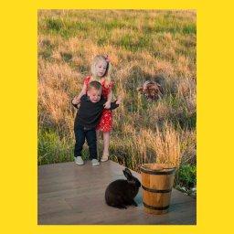 Мем - мальчик и девочка боятся кролика - шаблон с тигром