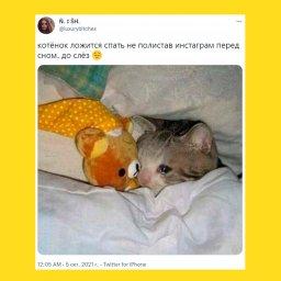 мем - падение интернета - ложишься спать не пролистав Instagram
