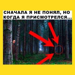 мем - Роберт Патиссон, красный круг - в лесу