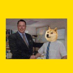 мем - DogeCoin и Илон Маск