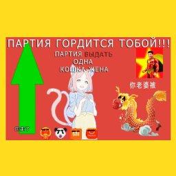 мемы - китайские мемы - выдать одну кошка жену
