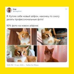 мемы про айфон 12