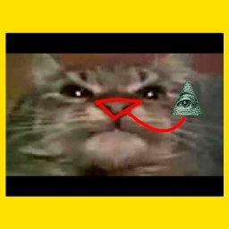 кот маму мав знак масонов