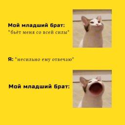 мем кот с открытым ртом