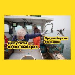 мем - женщина бросает лобстера в океан - депутаты после выборов