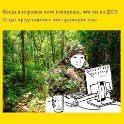мемы про чат и днр