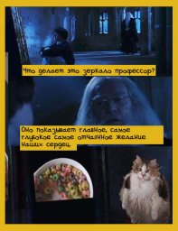 колечки и Дамблдор