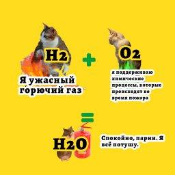 Мем - коты и таблица Менделеева - H2o