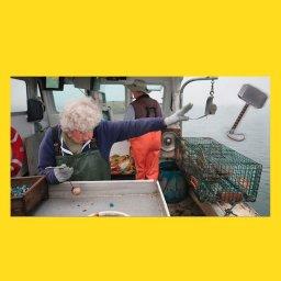 мем - женщина бросает лобстера в океан - молот Тора