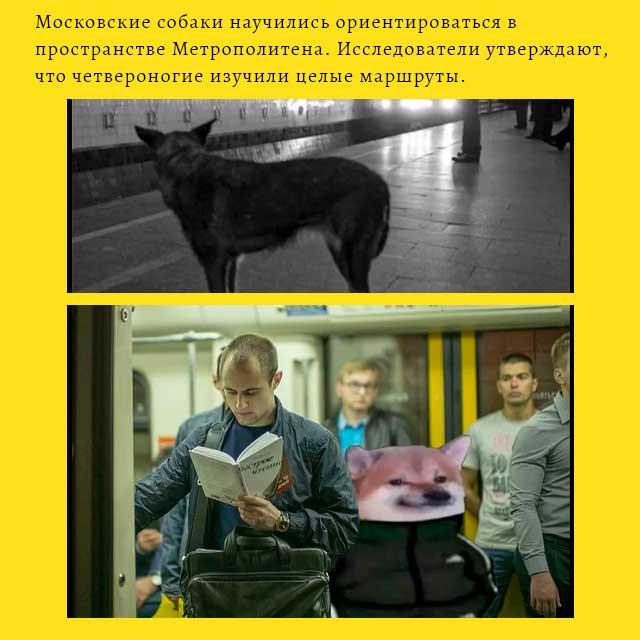 мем - русские в метро
