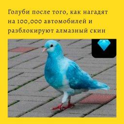 мем - голуби после того как нагадят на 100000 автомобилей