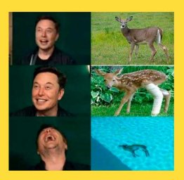 Илон Маск смеется над оленем: 3 стадии смеха