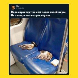 мем - игра в кальмара - кальмар едут домой после работы