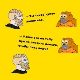 мем - Норд и обезьяна - платить деньги за воду