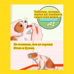 мем - Юлик и Кузьма такие хорошие - таблетки которые научат понимать смысл мемов