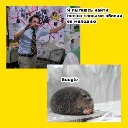 жирный тюлень мем