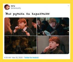 Рутина на карантине: рыжий из Гарри Поттера