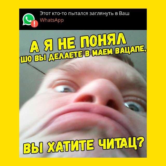 мем - горин - Что вы делаете в моём WhatsApp