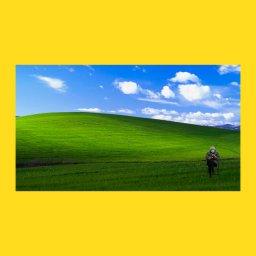 мем - Берни Сандерс -  в Windows XP