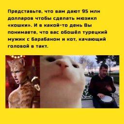 мем - турок с барабаном и кот качающий головой