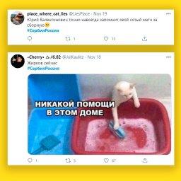мем - Жирков и сборная