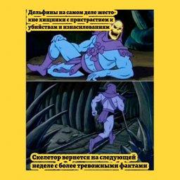 мем - факты от Скелетора - дельфины
