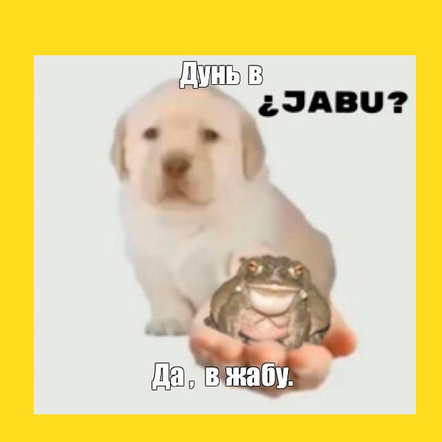мем - собака предлагает дунуть в жабу