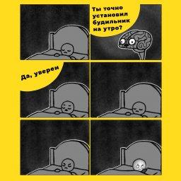 мем - мозг перед сном