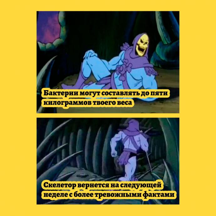 мем - факты от Скелетора - бактерии