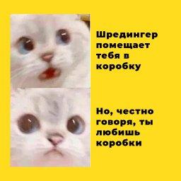 мем - Что испытывает Кот Шрёдингера