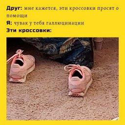 мем - кроссовки которые просят о помощи