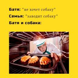 мемы - Даниил Степанов -батя и собака