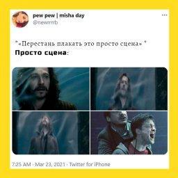 мем - Перестань плакать, это просто - эпизод Гарри Поттера