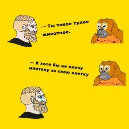 мем - Норд и обезьяна - не плачу ипотеку