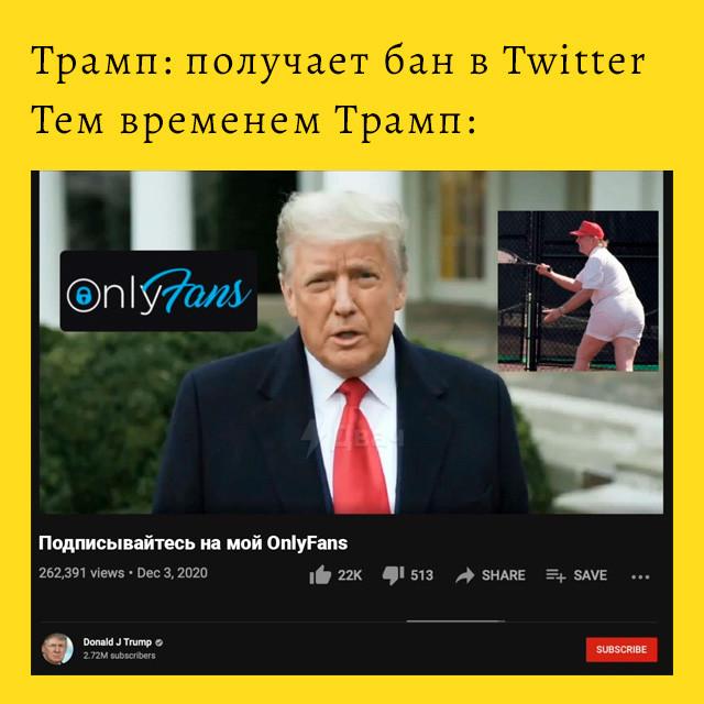 мем - аккаунт трампа в Twitter - на onlyfans