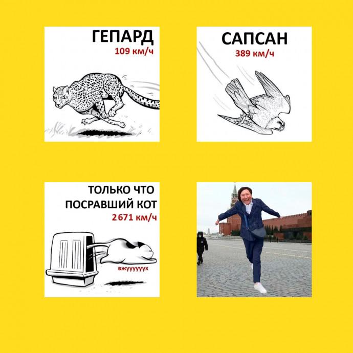 мемы - Азамат Айталиев - скорость