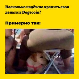 мем - безопасность вложения в dogecoin
