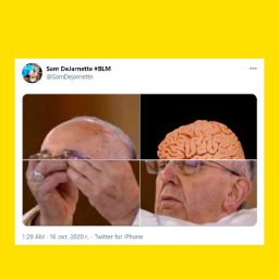мем - папа римский и мозг