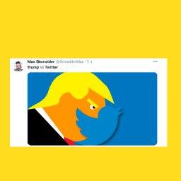 Мем - аккаунты Трампа - новые логотипы Twitter