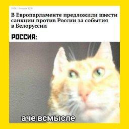 Мем про санкции против России из-за событий в Белоруссии