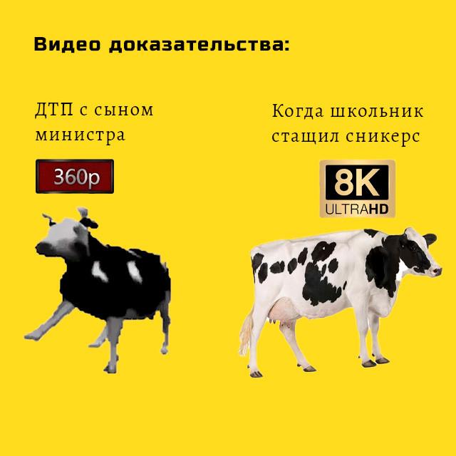корова танцует - мем