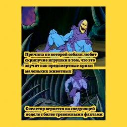 мем - факты от Скелетора - скрипучий игрушки и собаки