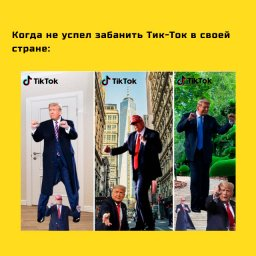 Мем - аккаунты Трампа - креатив в тик токе