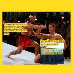 мем - Ван Дамм блокирует удар - желание похудеть к лету