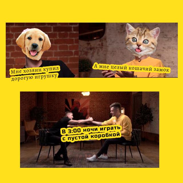 Мем - Щербаков и Дудь жмут руки  - кошки и собаки