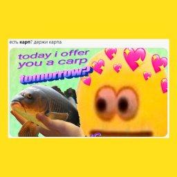 мемы про карпа - 7fafb1e2
